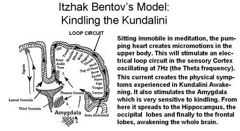 Bentovs model