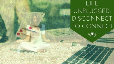 Life Unplugged: Disconnect to Reconnect